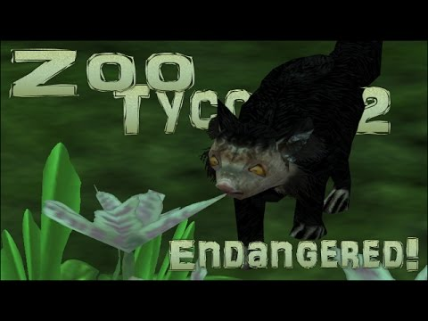 Endangered! I Spy an Aye-Aye! - Episode #37