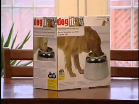 Dogit Design Fresh Clear Large Drinking Fountain Youtube
