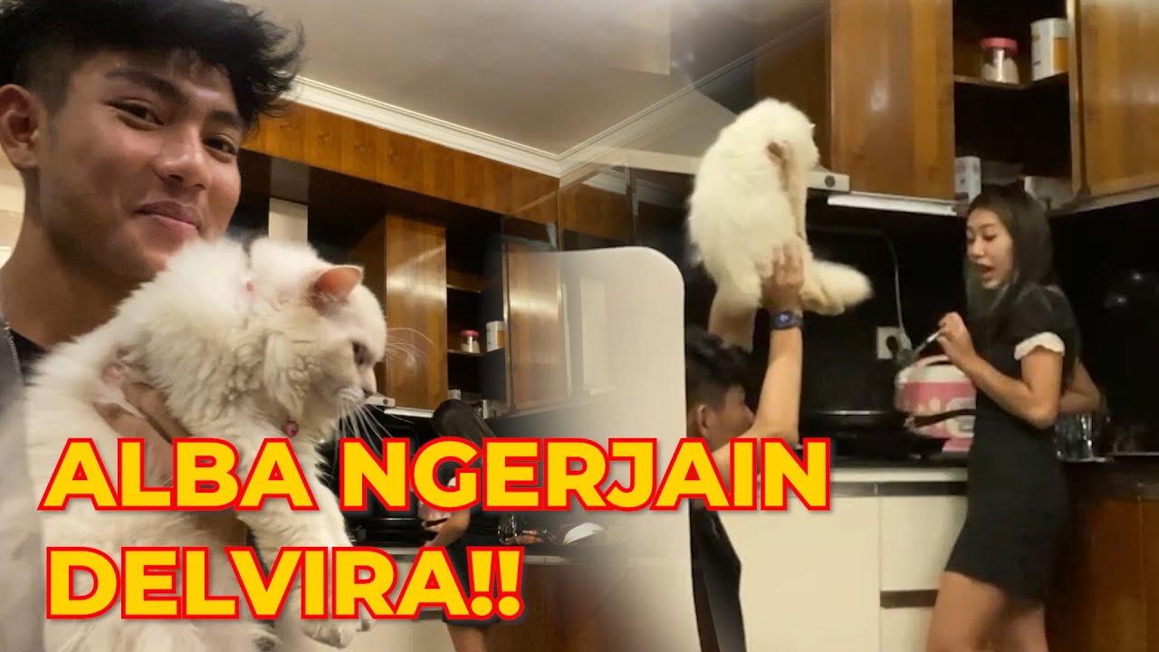 DELVIRA MARAH DITAKUTIN ALBA!!! DELVIRA TAKUT SAMA ALBA!! #sandyss
