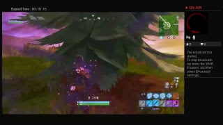 Fortnite Battle Royal Killing (Ps4) Bots
