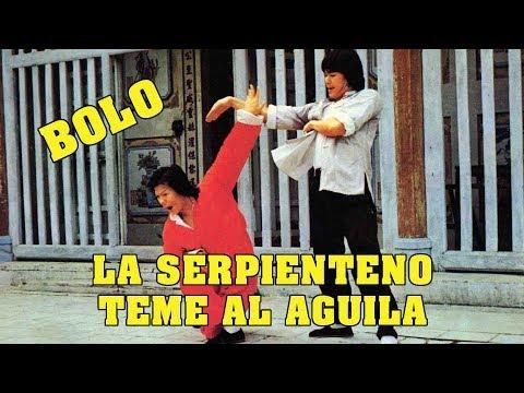 wu-tang-collection---la-serpiente-lo-teme-al-aguila---(fearless-master)-spanish-version
