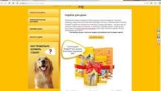 Как получить бесплатный корм для собак
