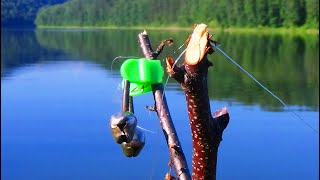 Рыбалка с НОЧЁВКОЙ! ЗАЛЕЗ В РЕАЛЬНУЮ ДИЧЬ! НО ТУТ ПРИШЛИ ОНИ!