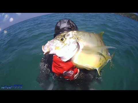 подводная рыбалка на рыбу