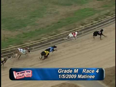 Victoryland 1/5/09 Matinee Race 4