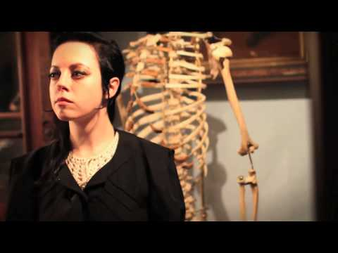 In the Magazine: The Taxidermy Collector from YouTube · Duration:  3 minutes 37 seconds