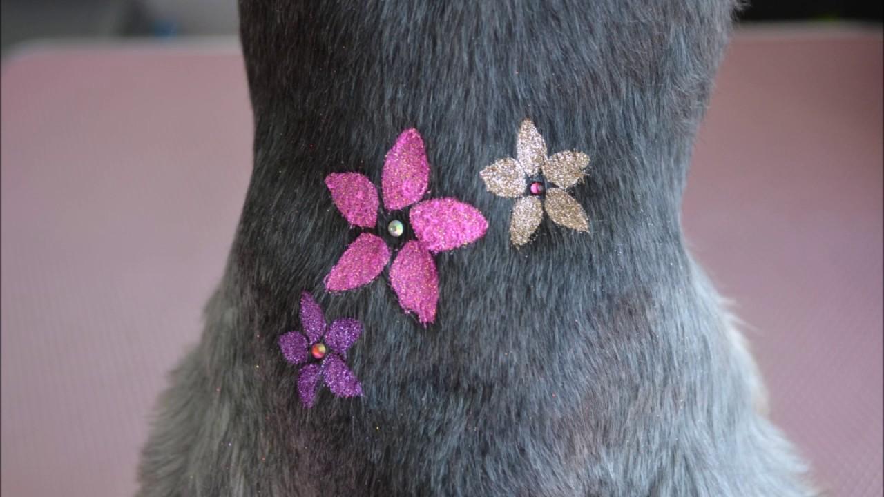 Creative Grooming dogs tatto Fryzjer Dla Psów Zoogo Ksenia&Zuza stylizacja psów ozdobne tatuaże