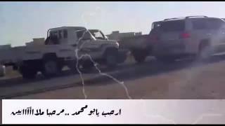 Gambar cover استقبال-ابومحمد زعبنوت المهري -الموافق2-2-2017