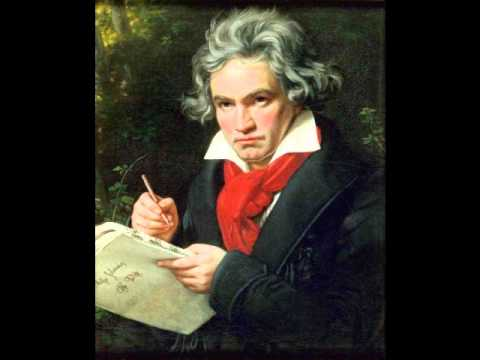 Beethoven - Symphony Nº.9, in D minor, op.125 'Choral' Finale - IV. Presto (Excerpts).wmv