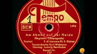 Bernhuber, Ludwig / Widmann, Kurt Orchester - Am Abend auf der Heide