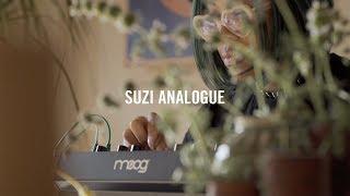 Patches & Patterns   House of Electronicus 2018   Suzi Analogue