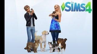 Sims 4 - Hunde und Katzen ♡ Bald gibt es wieder Nachwuchs ♡ #11 thumbnail