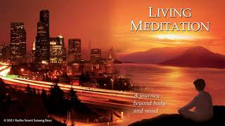 4. Meditation is a way of life - Living Meditation - RSSB Audio Book
