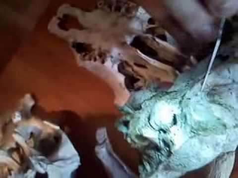 powtórka z osteologii kość klinowa - youtube, Sphenoid