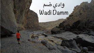 Wadi Damm Adventure | مغامرة وادي ضم