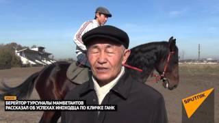 Красивая иноходь Ганка, принесшего хозяину «700 лошадей»