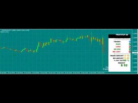 ProfitUP | Auto Trading EA for Binary Options on MetaTrader 4 | Auto Martingale 30USD into 74USD