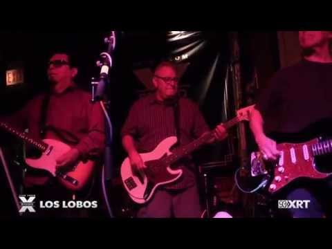 Los Lobos perform 'Don't Worry Baby' at 93XRT