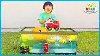 Sink Or Float For Kids Science Experiments You Can Do At Home With Ryan ToysReview