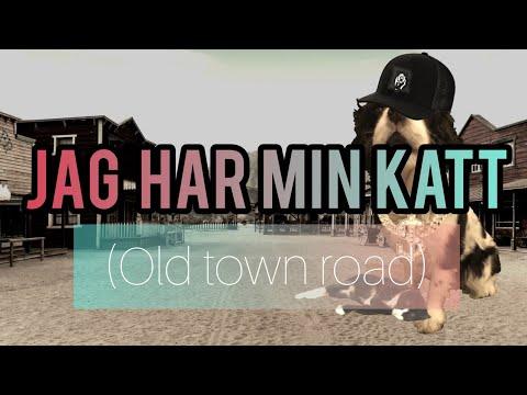 Jag Har Min Katt (Old Town Road) Feat. Viggo