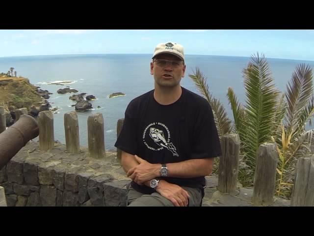 Watch Test: IWC Aquatimer Automatic vs. Tudor Pelagos