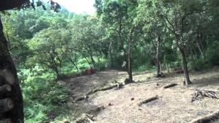 PLA - Manipur