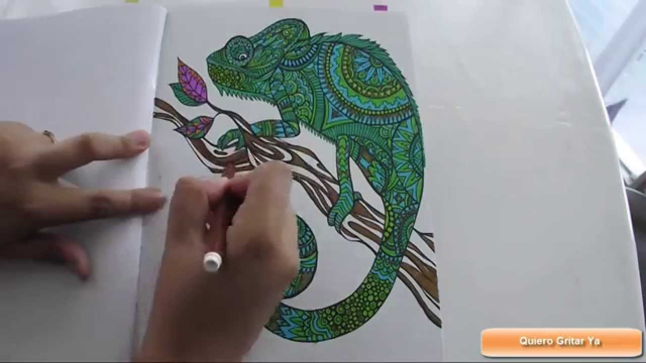 relax anti stress iguana coloring book youtube