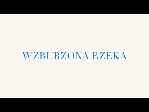 Michał Król - Wzburzona Rzeka (AKU ELE) - LYRIC VIDEO
