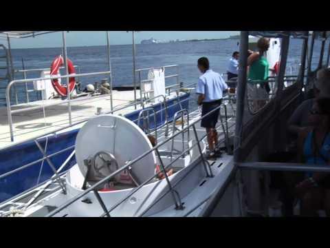 Why I Love Cozumel - Cozumel Atlantis Submarine