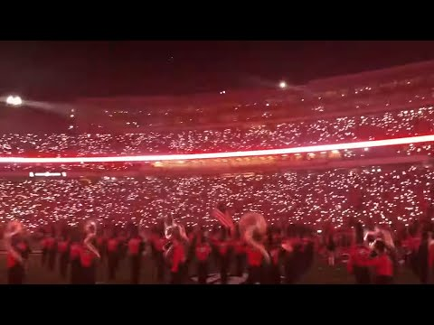Wow! The New LED Lights And Georgia Bulldogs Run Out Are Fantastic!