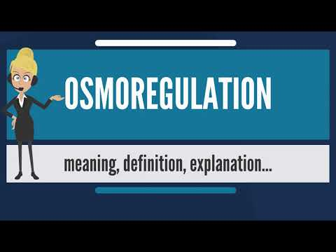 What Is OSMOREGULATION? What Does OSMOREGULATION Mean? OSMOREGULATION Meaning & Explanation