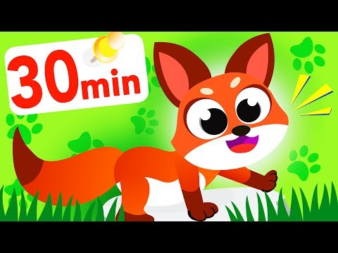 Are you Sly Like a Fox? The Fox, Pink Fox Family Fun Compilation by Little Angel