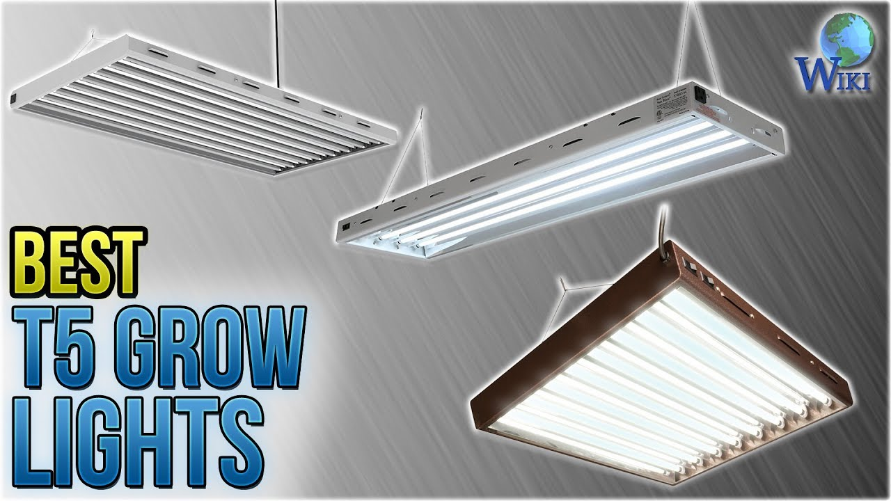 Top 9 T5 Grow Lights Of 2019 Video Review