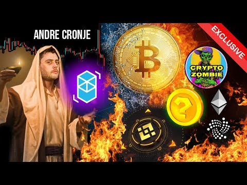 will-bitcoin-survive?-are-ieos-scams?-99%-of-altcoins-will-die?!-andre-cronje-interview