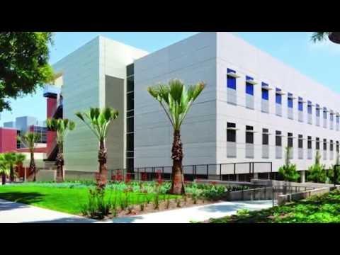 California State University Long Beach - 5 Things to Avoid