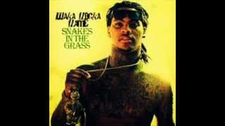 Waka Flocka Flame Snakes in The Grass(instrumental)