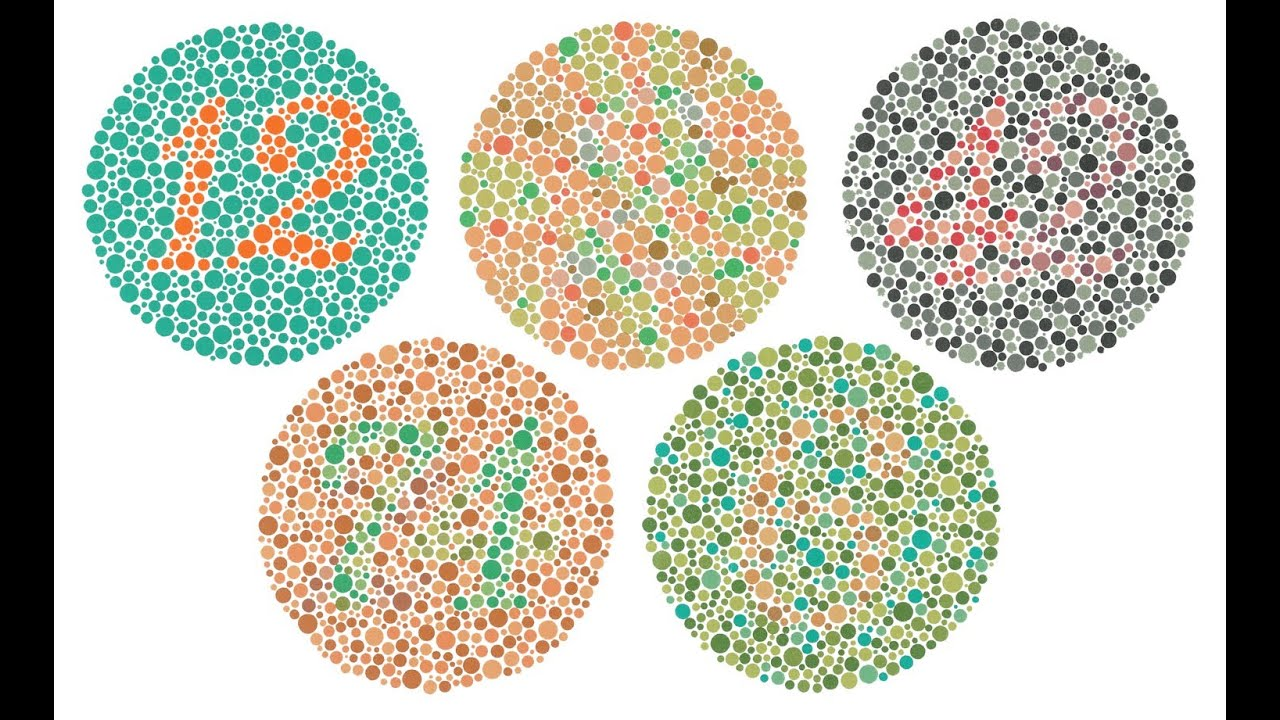 Color Blindness Quiz Test, What Kind Of Colorblind Are You ...