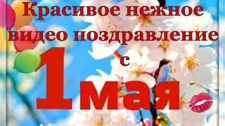 С праздником первого мая. Красивые видео поздравления с 1 мая на YouTube