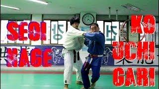 Seoi Nage and Ko Uchi Gari Combination by Korean 7th Dan (HD)