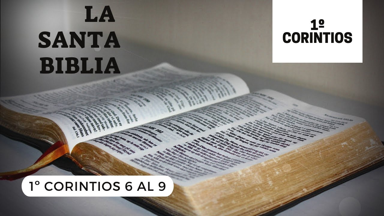 1 CORINTIOS 6, 7, 8, 9 (DÍA 292) LA SANTA BIBLIA    Audiolibro   