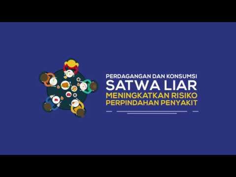 One Health untuk mengontrol zoonosis dan penyakit menular baru di Indonesia