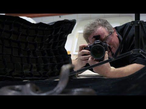 Snake bites 60 Minutes cameraman shooting Joel Sartore profile