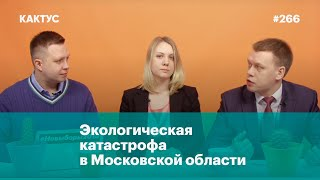 Экологическая катастрофа в Московской области