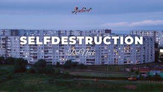 DuNock - Selfdestruction 🌆 [atmospheric ambient downtempo]
