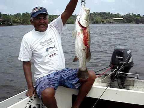 Fishing on bolgoda lake sri lanka 26th april 2009 youtube for Sri lanka fishing
