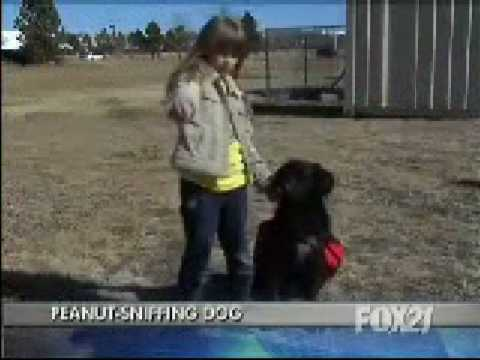 KXRM Channel 21 Peanut Sniffing Dog