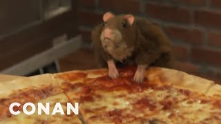 The Further Adventures Of Pizza Rat   CONAN on TBS