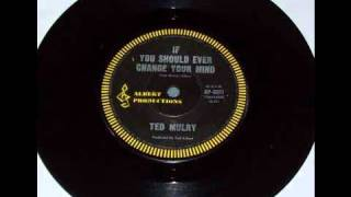 Ted Mulry - If You Should Ever Change Your Mind