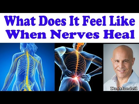What Does It Feel Like When Nerves Are Healing in Your Body - Dr Alan Mandell, DC