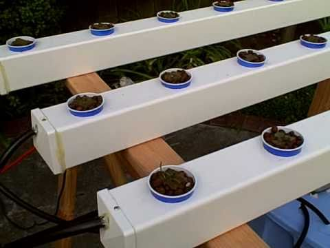 How to Build a Hydroponic Garden YouTube